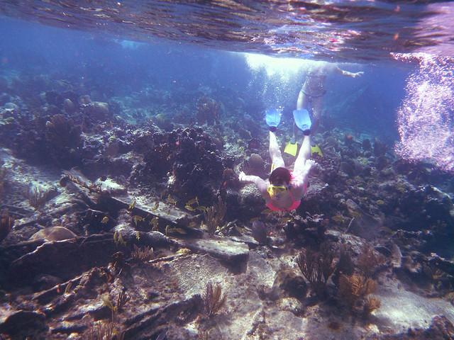 cuba snorkel