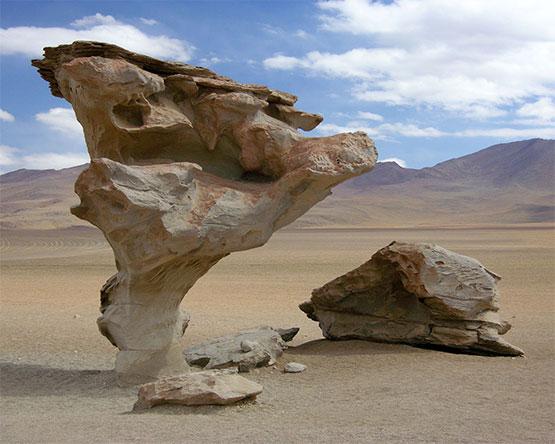 Árbol de piedra bolivia